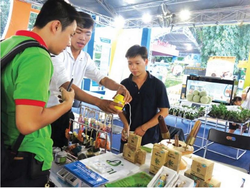 [Khoinghiepsangtao.com] – Hà Văn Lộc và duyên nghiệp với cây ngải cứu